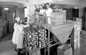 Fyra kvinnor vid paketeringen av långa, raka makaroner i Gefle Makaronifabrik. Två står högt under taket för att nå. Foto: C. Larsson ateljéer/Länsmuseet