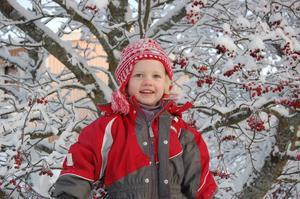 Vilken underbar vinter man kan bara le,här Sofia 3,5 år uppe bland bären.