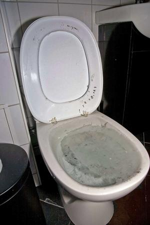 Ett moment i skadegörelsen var att hälla cement i en toalett. Foto: Polisen