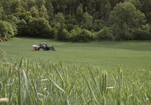 Krav-odling ger lägre skördar än konventionell odling, påpekar skribenten. På bilden konventionell odling där en lantbrukare sprider handelsgödsel.