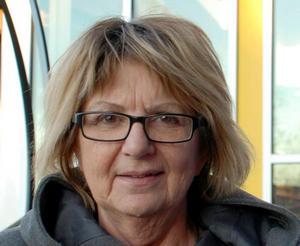 Kommunalrådet Irene Homman (S) får ta omtag med att förklara hur viktiga revisorerna och kommunallagen är.