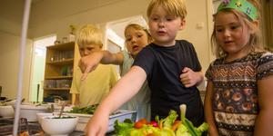 Johannes Svensson, Michelle Niclasson, Alice Östling och Lea Mineur är alla förtjusta i gurka, men morot och sallad står också högt i kurs.