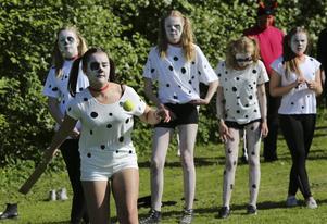 De 101 dalmatinerna var överlyckliga då de fick ägna dagen åt att jaga bollar.