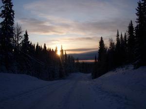 Vinterväg i Bastubodarna Foto: Susanne Brunnström