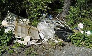 Foto: LEIF JÄDERBERG Sopor vid en skogsbilväg mellan Järvsta och Bomhus.