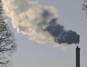 Debattörerna skriver att en stor andel av Stockholms läns småföretag vill ha ökat stöd i sitt miljöarbete.