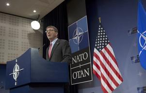 Birger Schlaug varnar för värdlandsavtalet med Nato. Bilden visar USA:s försvarsminister Ash Carter .
