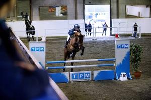 Mittmedia kommer att sända live från två tävlingsdagar under Gävle Horse Festival.