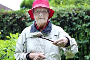 Snigeljägaren Hilkka Risberg har fått en del kritiska kommentarer för att hon är grym mot sniglarna.