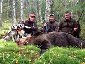 Robin Strömqvist, Janne Westerlund och Dick Höglund med den skjutna björnen.