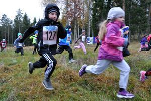 Starten har precis gått i loppet för de allra yngsta i Bamseloppet.