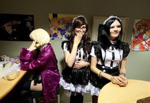 Västeråsarna Eri-Chan och Lo-Chan har startat maid-café tillsammans med några kompisar. Alla i personalen har sin egen karaktär.
