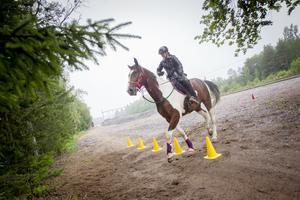 Anna Norbäck med sin häst Gimmic K tog sig elegant genom slalomridningen.