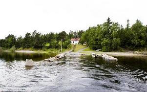 Foto: Grøtt, Vegard