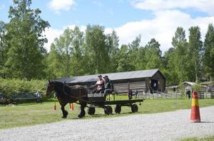 Brukskörning innebär att ekipagen kör med vagn genom en bana med hinder.