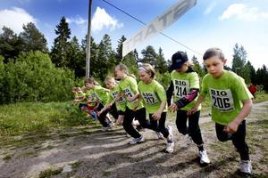 De verkade ha myror i benen Hedesunda skolas klass 3. Vilket är bra när man ska springa                                600 meter terräng. Från höger ser vi bland andra Isak Fasting, Elina Erlandsson och Thea Lööf.