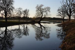 En sommarkväll vid Strömsholm