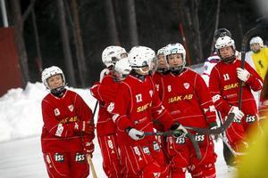 Härnösandsspelarna fick jubla flera gånger  efter att ha tagit säsongens första  seger.