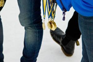 Var och en som tog sig i mål fick en varsin guldmedalj. Därefter hägrade den varma blåbärssoppan.