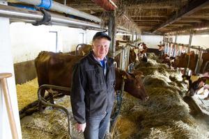 Mats Öberg har 21 kor på sin gård i Gåsbo i By. Det gräs, korn och vete som djuren äter odlas på gården.