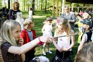 FRIHET. Celina Hast sade adjö till det lilla livet som hon följt från larv till färdig fjäril. Nu ska den och de andra fjärilarna som klasskamraterna i Hammarby skola har fött upp få leva i frihet.