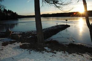 Sten. Stora Ulvsjön har fått en ny stenpir utbyggd i sjön trots strandskyddet. Det är en av många lokala miljöfrågor som avgör framtiden för miljön i Säter och Dalarna.