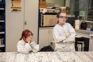 Hilda Markusson och Emma Perbo väntar på att handledaren Martin Larsson ska börja med salt-testet.