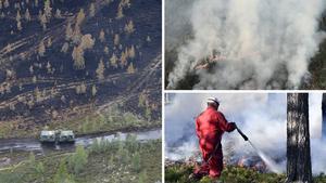 Nu avslöjas nya detaljer om bekämpningen av skogsbranden på Älvdalens skjutfält – om hemlighetsmakeriet med bomben och planerna på ett konstgjort regn.