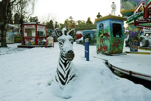 Tivolit har 63 karuseller som har sålts eller ska säljas. De flesta hamnar i Tyskland, säger Netterström.