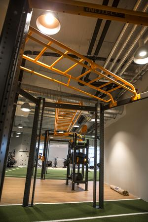 En stor funktionell del i gymmet där man använder sin egen kropp som vikt.