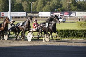 Månprinsen A.M. segrade i Sven O Perssons Minne.