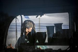 Den vita damen kör den gröna bussen. Hos Olle Wickström i Munkflohögen är allt möjligt.