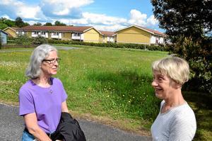Högt gräs. – Vi har inte verktyg och resurser att sköta angränsande kommunal mark även om vi skulle vilja, säger Barbro Melin och Eva Wahlsten i styrelsen för samfälligheten för villorna runt Nävervägen och Klövervägen på Hitorp.