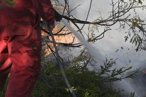 Söndagen den 15 juli tog elden rejäl fart.