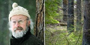 Richard Holmqvist, skogspolitisk talesperson för Miljöpartiet de gröna i Dalarna. Foto: Privat/TT/Montage