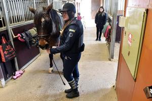 Ebba Lindh trivs på hästryggen då det inger en känsla av frihet.