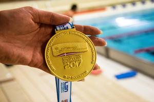EM-guldet från Köpenhamn 2017.