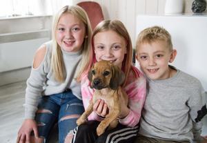 Filippa, Jennifer och Charlie är väldigt förtjusta i den nya familjemedlemmen.