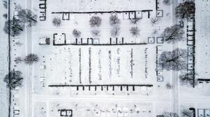 Linjer i olika riktningar på Gustav Adolfs kyrkogård.