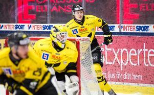 Ölander Horn i VIK-tröjan säsongen 16/17. Foto: Arkiv