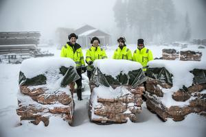 Produktionen av ved ska vara i full gång till jul. 1000 fastkubikmeter björk är beställt. Dubbelt så mycket som inför förra eldningssäsongen. Om tre år räknar man med att kapa och klyva 3000 fastkubikmeter.