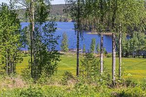 Foto: Malin af Kleen/ Bostadsfotograferna. Utsikt från huset i Västra Löa.