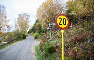 Björkfjärdsvägen ser ut att få behålla sin nuvarande skepnad.