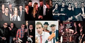 På lördag kväll anordnar Dusty Road Blues en endagars bluesfestival med sex bluesband i Frejasalen i Kulturhuset i Skövde.