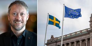 """""""Vi behöver politiker som ser till hela Sverige och inte bara till en sakfråga"""" skriver Tommy Hafvsdalen, företags-vd i Dalarna. Foto: Privat/Henrik Montgomery/TT/Montage"""