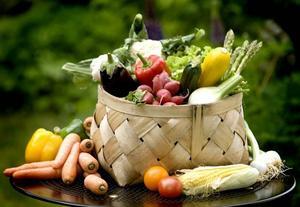 FROSSA! Nu är det skördetid i grönsakslanden. Frossa loss medan grönsakerna                   smakar som mest och bäst.