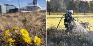 Fjolårsgräset är torrt och i kombination med värme och vind är risken för gräsbränder mycket stor.