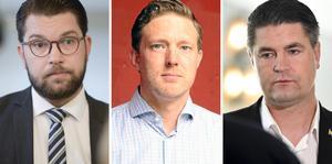 Jimmie Åkesson (SD), Josef Fransson (SD) och Oscar Sjöstedt (SD) beskriver sitt förslag till höstbudget i debattartikeln.