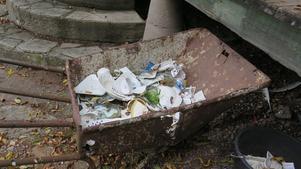 Familjen har plockat upp de krossade tallrikarna och muggarna som låg spridda utanför stugan.