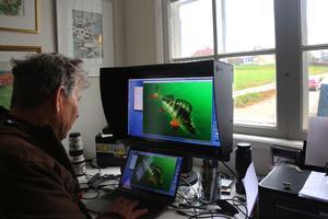Leif Milling har sin studio i köket hemma i Gimdalen. Till våren planerar han att släppa en fiskekokbok.